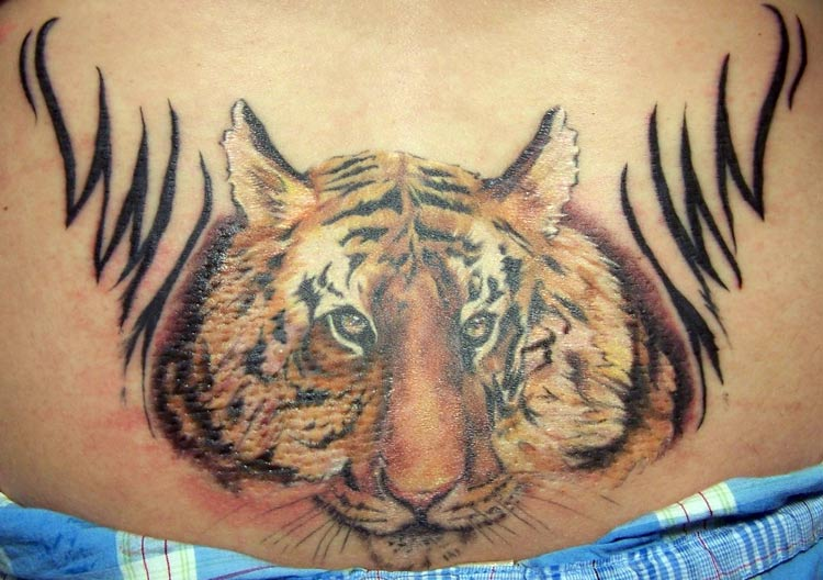 Tiger stamp by alana lawton tattoonow for Tattoo shops in hartford ct