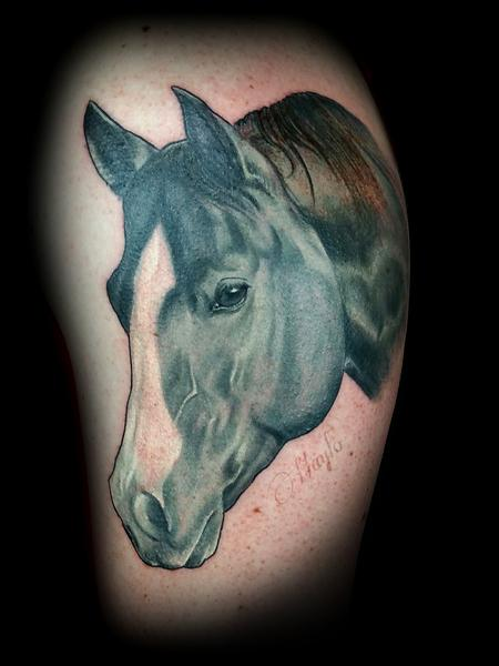Haylo - Realistic black and gray Quarter Horse head