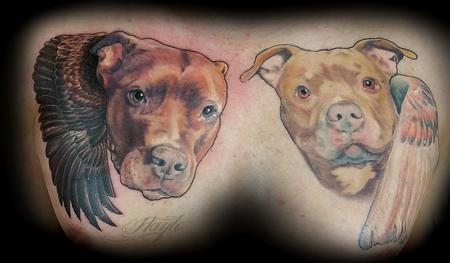 Haylo - Pitbull portraits with wings