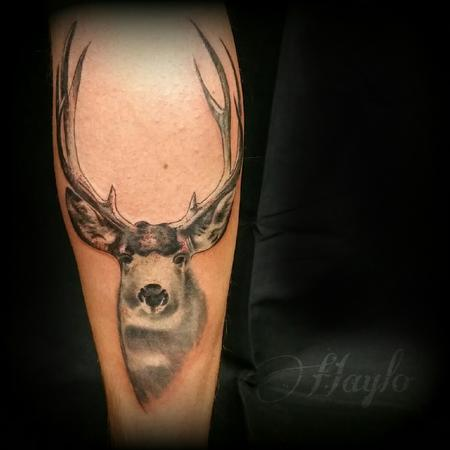Tattoos - Realistic Mule Deer tattoo black and gray - 109136
