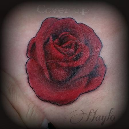 Cover up with Realistic style red rose Design Thumbnail