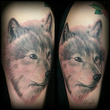 Haylo - Realistic style black and gray wolf half sleeve tattoo