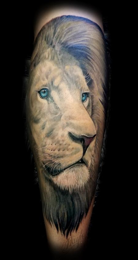 Haylo - Realistic African Male Lion calf piece