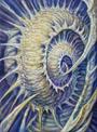 P114 HyperCoSMic Spiral Guy Aitchison Print