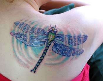 Tattoos - Dragonfly Ripple - 29073