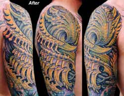 Guy Aitchison - Bio Coverup