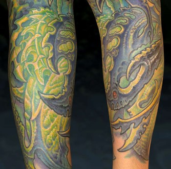 Guy Aitchison - Bio Half sleeve