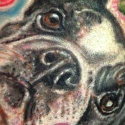 Tattoos - Boston terrier tattoo with flowers - 79189