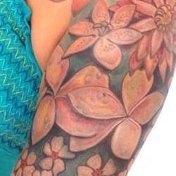 Tattoos - Margarets Native and Tropical Bodyset - 79801