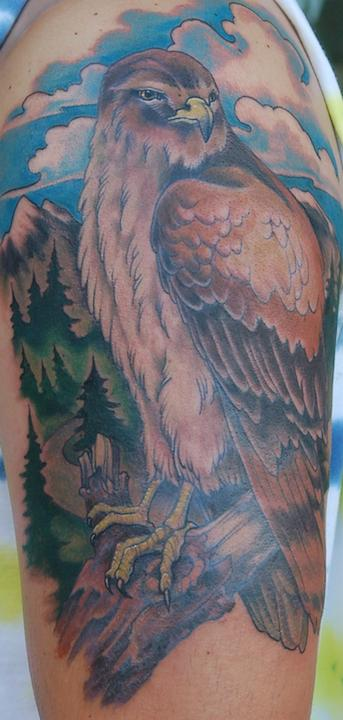 Shawn Hebrank - Hawk Tattoo