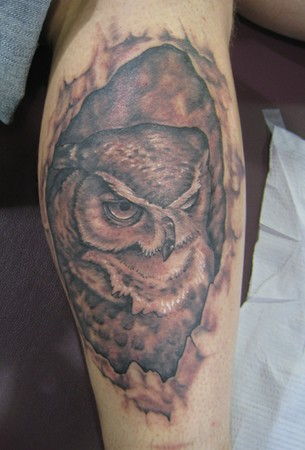 Shawn Hebrank - Owl in Hollow Tree