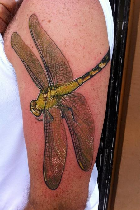 Tattoos - Eastern pond hawk - 78559