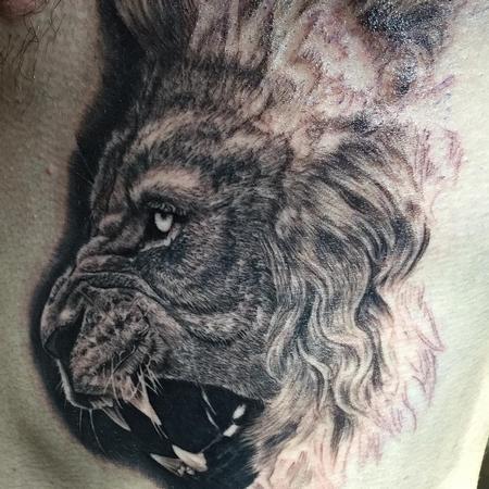 Lion In Progress
