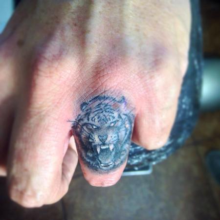 Jeff norton tattoos tattoos black and gray tiger for Animal finger tattoos