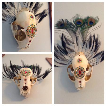Jessica Weichers - Lynx Skull
