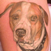 Realistic dog portrait Tattoo Design Thumbnail