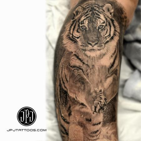 Healed Tiger in Snow Tattoo Design