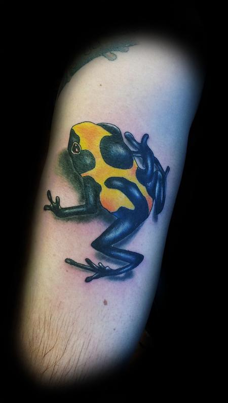 Tattoos - 3D full color tree frog - 86650