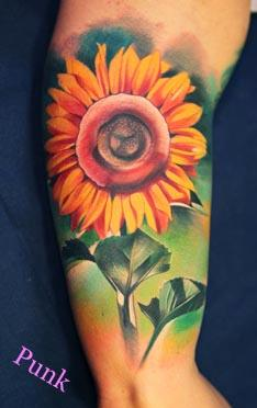 Punk - Sunflower