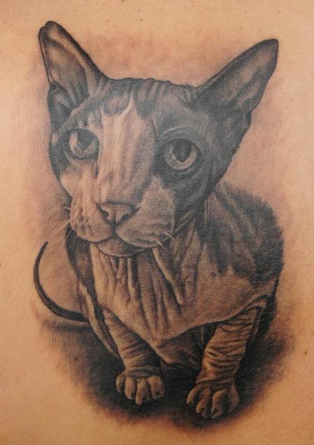 Tattoos - Sphynx Cat - 56778
