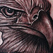 Tattoos - Bald eagle tattoo - 71085