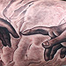 The Creation of Adam Tattoo Design Thumbnail