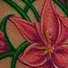 Tattoos - flowers and vines tattoo - 71132