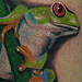 Tattoos - red eyed tree frog tattoo - 71137