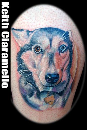 Keith Ciaramello - husky