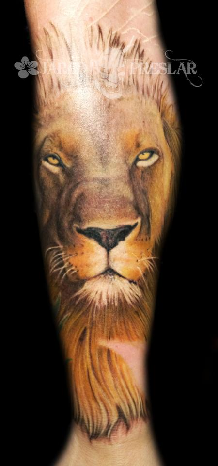 Tattoos - Lion Tattoo  in Progress - 69058
