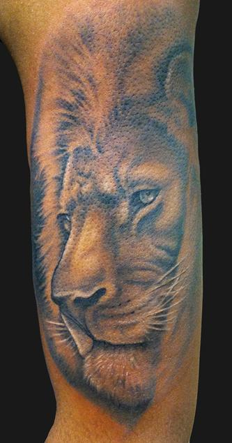 Black and gray lion by marc durrant tattoonow for Skin gallery tattoo