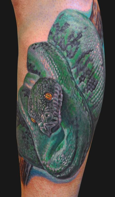 Jamie Parker - Green Tree Python Tattoo