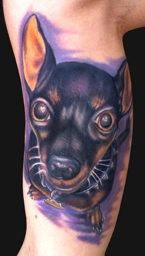 Tattoos - Katelyn Crane - Min Pin Dog tattoo