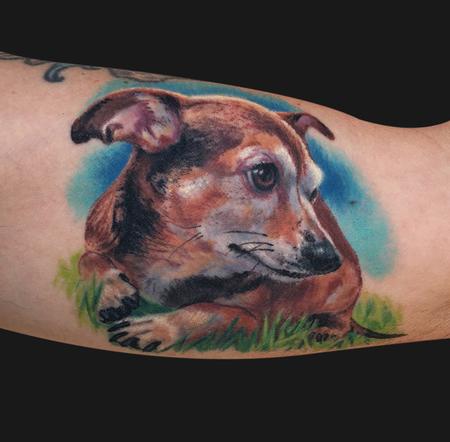Tattoos - Chiweenie Dog Portrait Tattoo - 98680