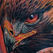 Tattoos - Eagle Portrait Tattoo - 89578