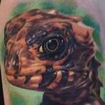 Tattoos - Red Eyed Croc Skink Arm Tattoo - 104288