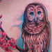 Tattoos - Owl perched on cherry blossom branch - 62011