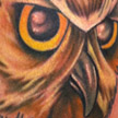 Tattoos - Owl and Mouse tattoo - 56311