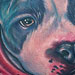 Pitbull Portrait Tattoo Tattoo Design Thumbnail