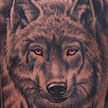 Tattoos - Red Eyed Wolf Tattoo - 93214