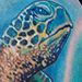 Tattoos - Sea Turtle Tattoo - 55650