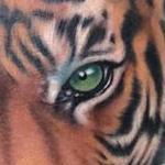Tattoos - Tiger tattoo - 101133