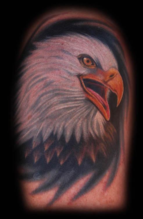 Bald eagle tattoo by joshua hibbard tattoonow for Black eagle tattoo shop