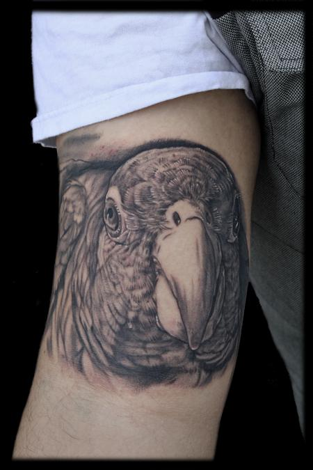 Tattoos - PUERTO RICAN PARROT PORTRAIT HERITAGE TATTOO - 74054