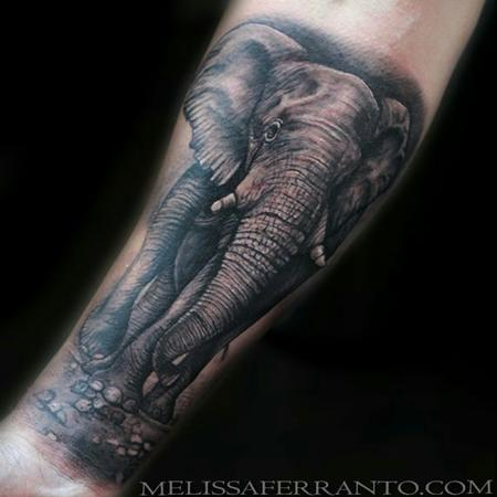 Tattoos - ELEPHANT  - 121963