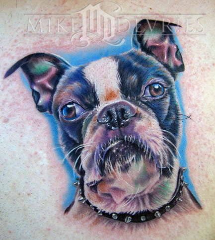Mike DeVries - Boston Terrier
