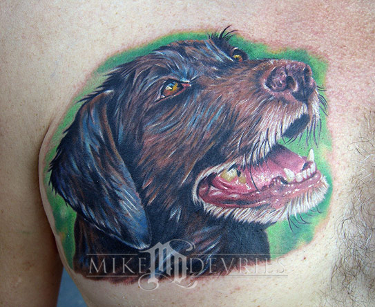Mike DeVries - Dog portrait tattoo