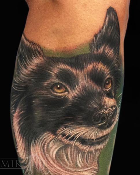 Tattoos - Border Collie Tattoo - 102453