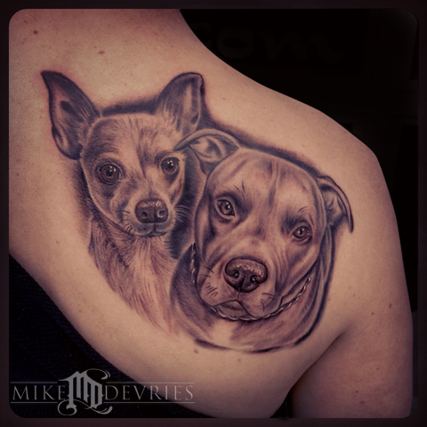 Mike DeVries - Chihuahua and Pitbull