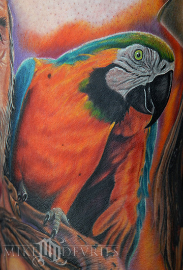 Tattoos - Parrot Tattoo  - 23758